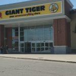 Giant Tiger Survey